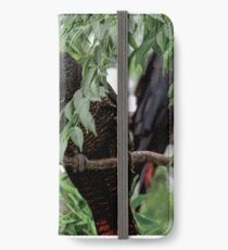 Care to Share-Female Red Tailed Black Cockatoos iPhone Wallet/Case/Skin