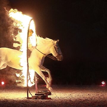 Horse of Fire by Stwayne