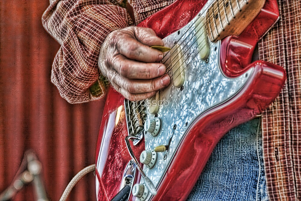 The Guitarist by rossco