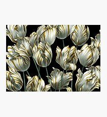 Winter Tulips in Gold. Photographic Print