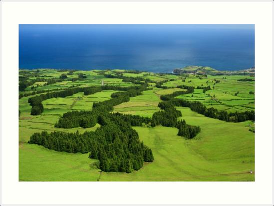 Typical Azores landscape by Gaspar Avila