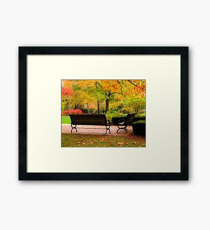 Take the rest Framed Print