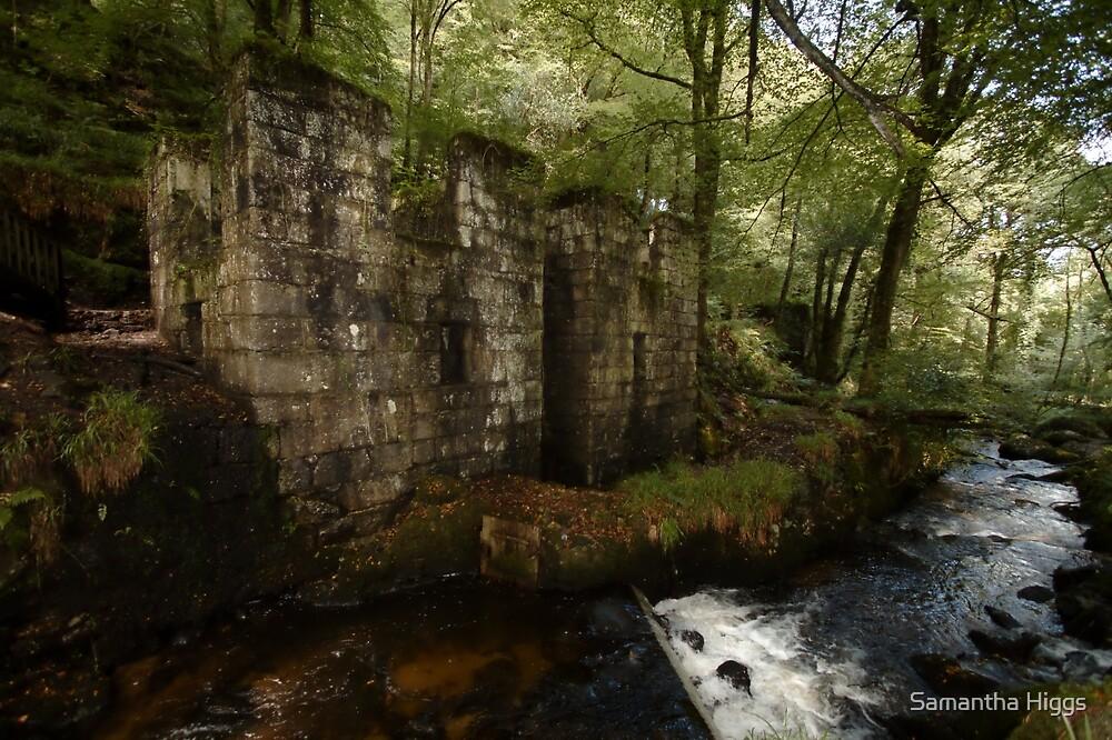 Ruined Gunpowder Mill - Cornwall by Samantha Higgs