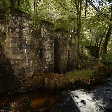 Ruined Gunpowder Mill - Cornwall by purpleelephant