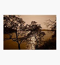 View Photographic Print