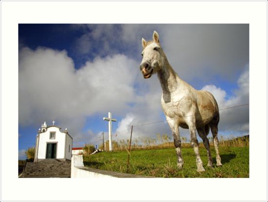 Horse and chapel by Gaspar Avila