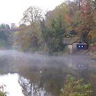 Mist on the Wear in Durham (2) by Tony Blakie