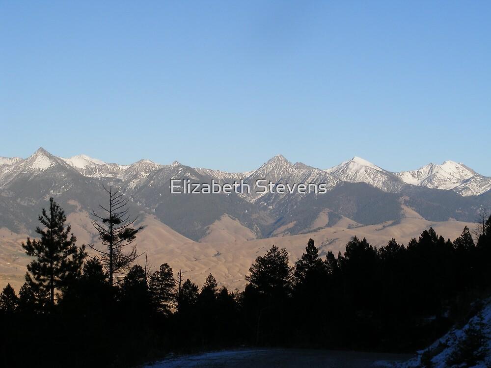 The Rockies by Elizabeth Stevens