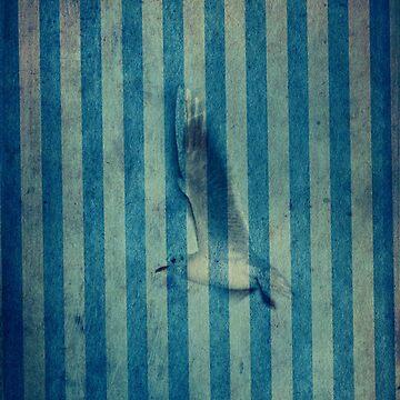 seagull in cyan by fredlevy-hadida