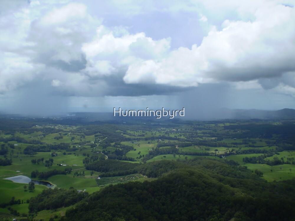 Rain cells by Hummingbyrd