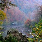 Rainy Days On The Mulberry River by NatureGreeting Cards ©ccwri
