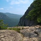 Cliff View from Hickory Nut Gorge, NC by Anna Lisa Yoder