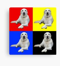 Crosslegged Labrador Times Four Canvas Print