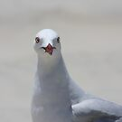 You talking to me?? by Dean Redsell