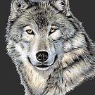 The Dark Wolf - Der Dunkle Wolf von Nicole Zeug