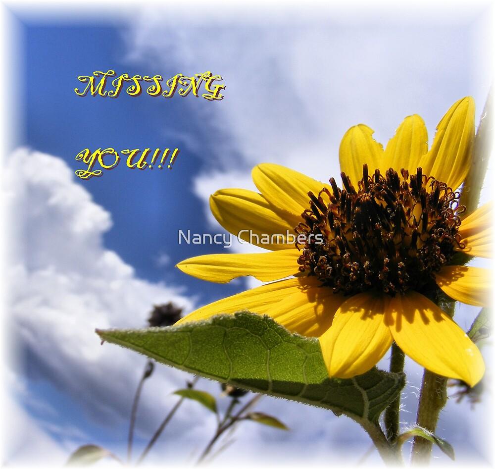 Missing You! by NancyC