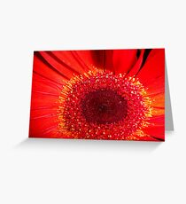 Red Raw Greeting Card
