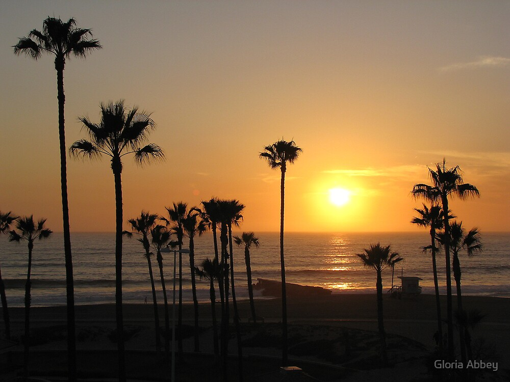 Sunset thru the Palms by Gloria Abbey