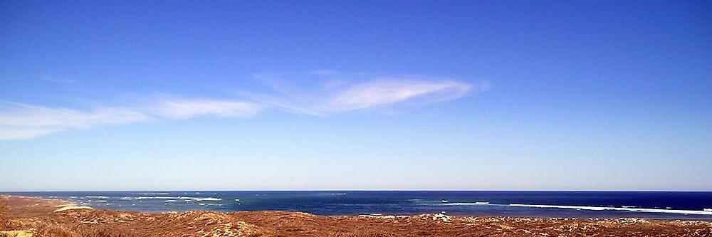 horizon by sarah bragg