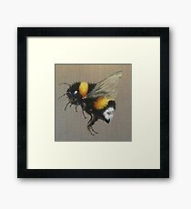 Bumble Bee Oil Painting by Angela Brown Art Framed Print