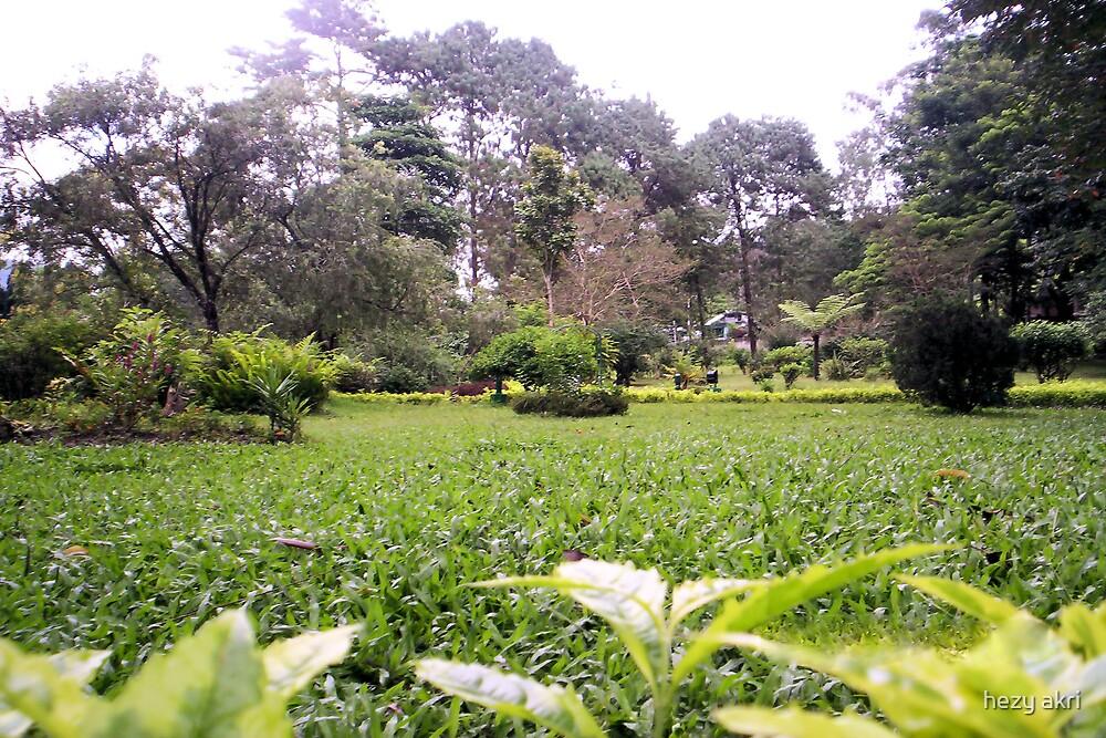 lovely garden by hezy akri