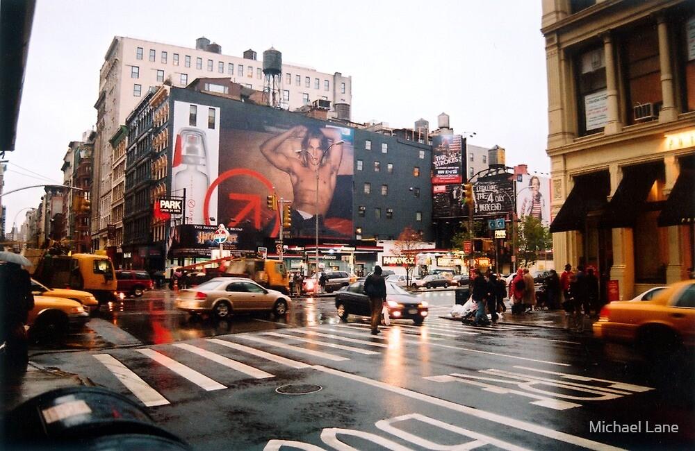 Manhattan by Michael Lane