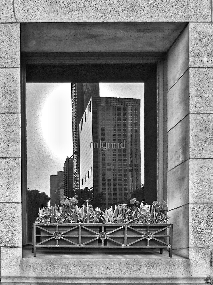 Reflection of Chicago by mlynnd