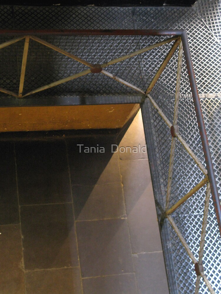 View from Walkway: Old Melbourne Gaol by Tania  Donald
