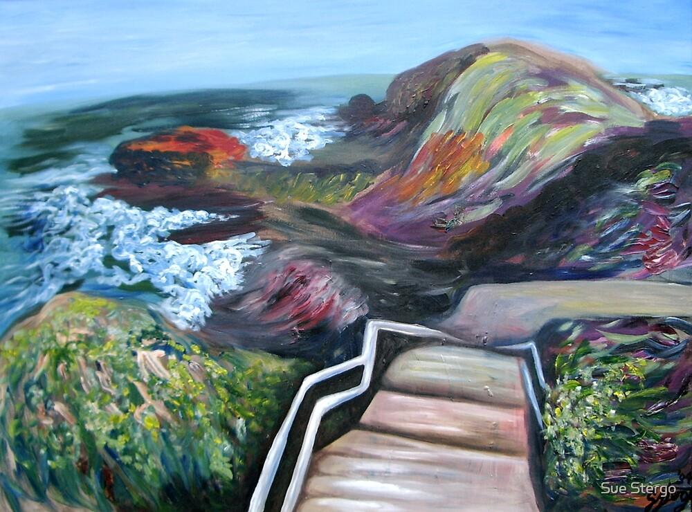 Cape Schank by Sue Stergo