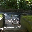 Open Gate in Enniskerry by Riihele