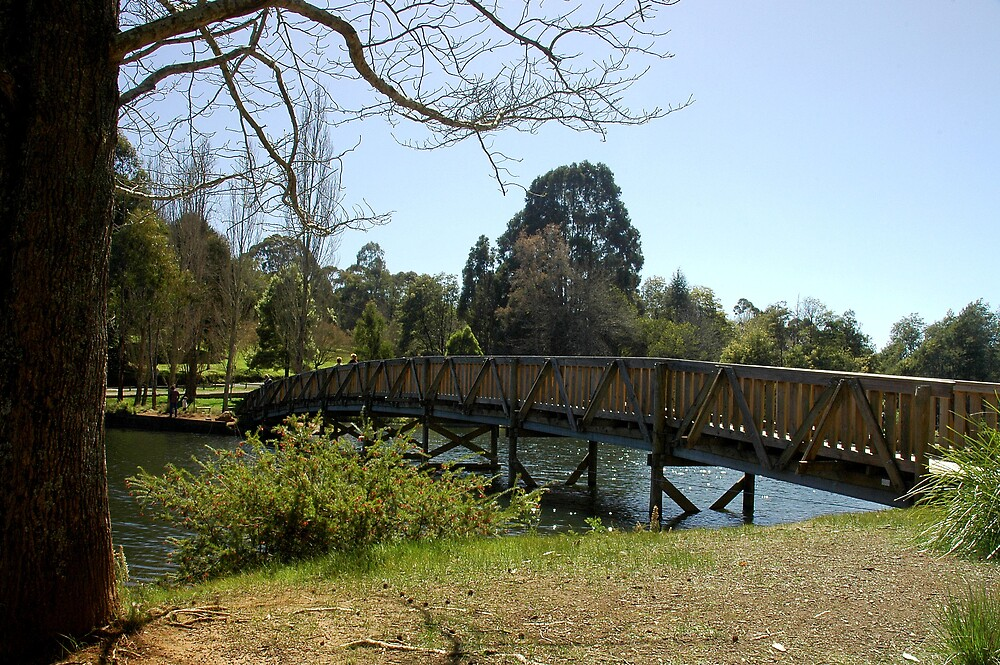 Bridge Over Emerald Lake, Emerald, Dandenong Ranges. by Roger Olasiman
