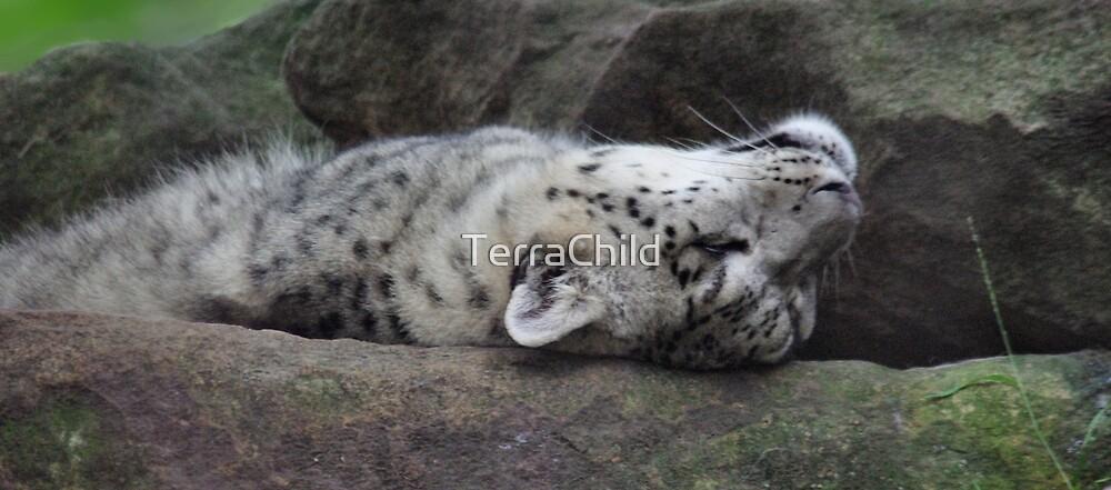 Snow Leopard II by TerraChild