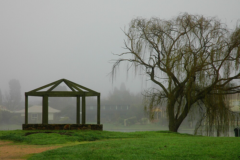 Rowville Lake awash in fog, Rowville. by Roger Olasiman