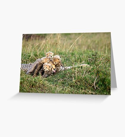 There is no such thing as too much love. Greeting Card