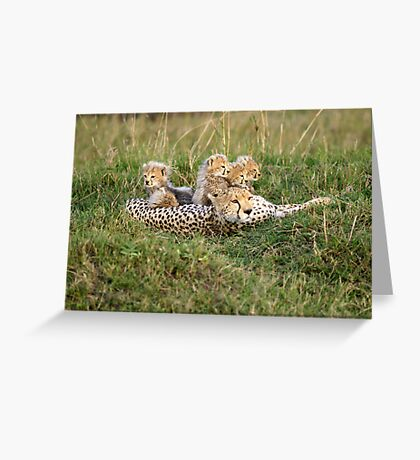 One happy cheetah family Greeting Card