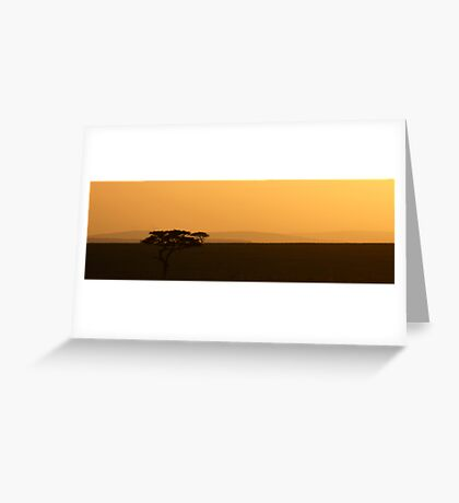 Accacia tree sun rise Greeting Card