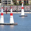 Red Bull Air Race Perth  by Danielle Knight