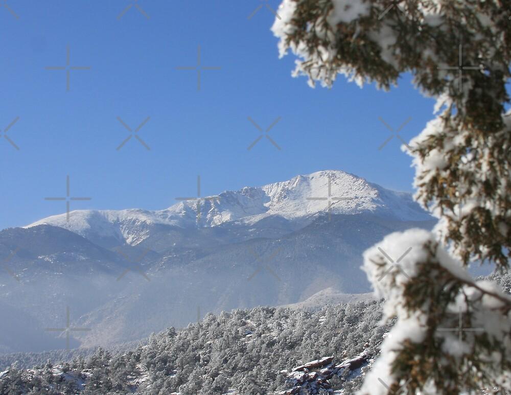 Silence in the Rockies by Beverlytazangel