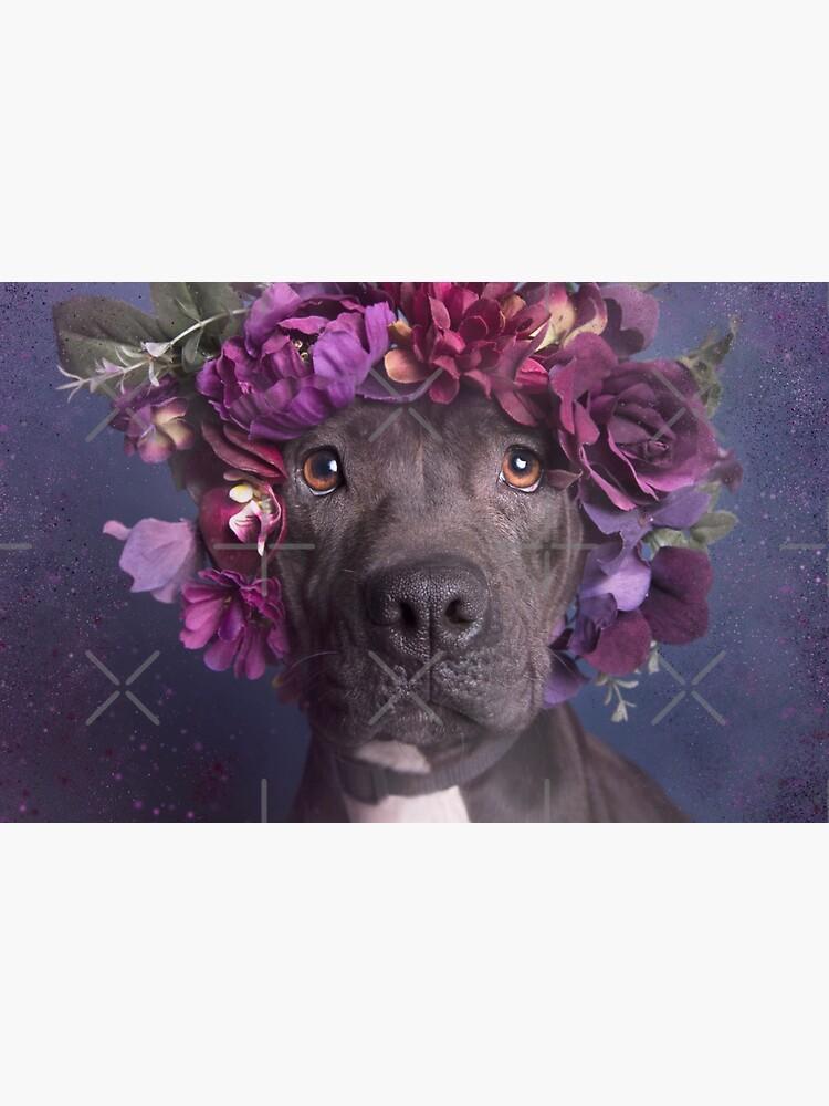 Flower Power, Arie von SophieGamand