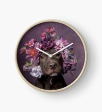 Flower Power, Dax Clock