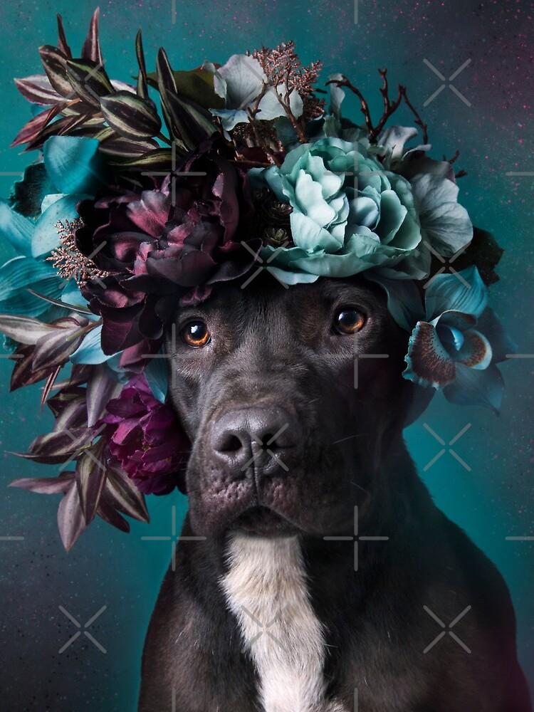 Flower Power, Aden von SophieGamand