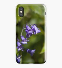 Native English Bluebell in Woodland iPhone Case/Skin