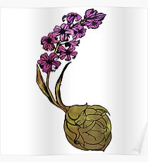 Hyacinth Flower Bulb Fairy - Purple Poster
