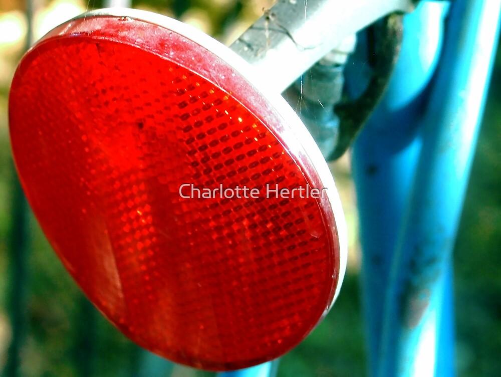 Reflective by Charlotte Hertler