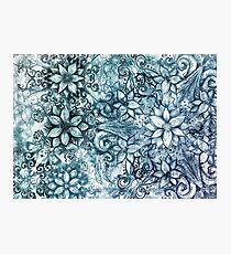 Trillium - blue Photographic Print