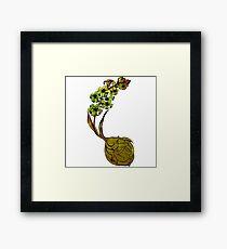 Hyacinth Flower Bulb Fairy - Green Framed Print