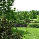 Hilltop Garden - Blick von Clover Hill von BlueMoonRose