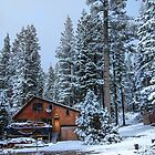 USA. California. Wooden Cabin. First Snow. by vadim19