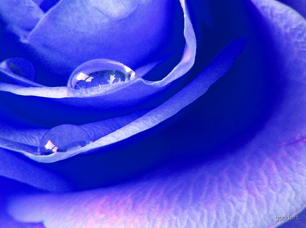 I'm Feeling Blue ....... by godders