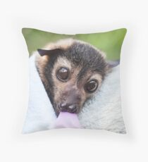 Orphan Spectacled Flying Fox Throw Pillow